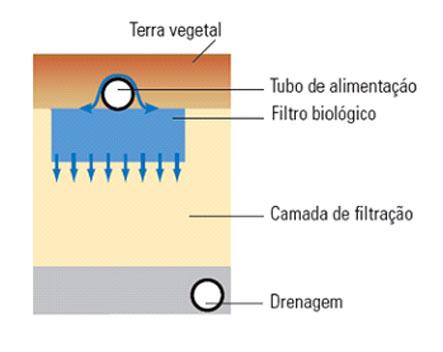 filtro biológico como funciona